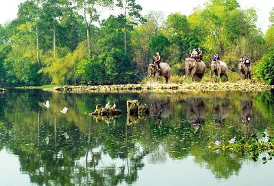 Parc national de Yokdon